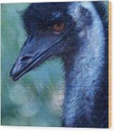 Eye Of The Emu Wood Print by DerekTXFactor Creative