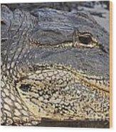 Eye Of The Gator Wood Print by Adam Jewell