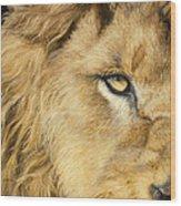 Eye Of The Lion Wood Print
