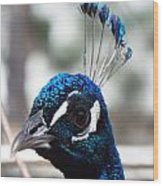 Eye Of The Peacock Wood Print