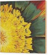 Eye Of The Sun Wood Print