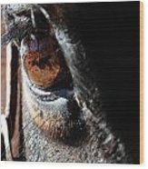 Eyeball Reflection Wood Print