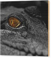 Eyes For You Wood Print
