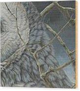 Eyes Of The Taiga Wood Print
