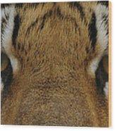 Eyes Of The Tiger Wood Print by Sandy Keeton