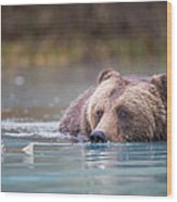 Eyes On The Prize  Wood Print