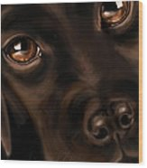 Eyes Wood Print by Veronica Minozzi