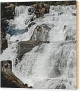 F Stop Glen Alpine Falls Wood Print