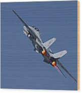 F14 Tomcat - Vf101 Grim Reapers Wood Print