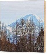 F2110936 Wood Print