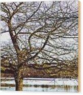 F2110989 Wood Print