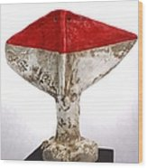 Fabulas Red Humanum  Wood Print