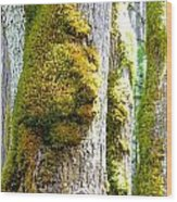 Face In The Moss Wood Print