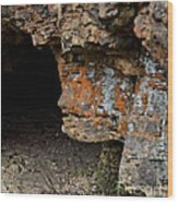 Natures Sclupture - Rock Face Wood Print