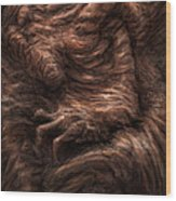 Face Of The Beast Wood Print