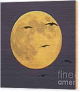 Face On The Moon Wood Print