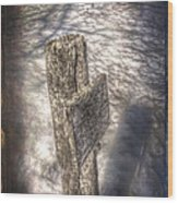 Facebook Posts Wood Print by The Stone Age