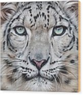 Faces Of The Wild - Snow Leopard Wood Print