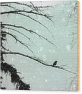 Abstract Faded Winter Wood Print