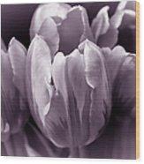 Fading Tulip Flowers Lavender Gray Monochrome Wood Print