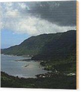 Fagaloa Bay Wood Print