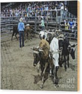 Fair Rodeo Wood Print