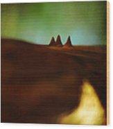 Fairies Giza Wood Print by Rebecca Sherman