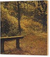 Fairy Autumn Light  Wood Print