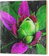 Fairy Bloom  Wood Print by Natalya Karavay