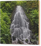 Fairy Falls In Spring Wood Print