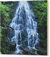 Fairy Falls Oregon Wood Print