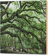 Fairy Tale Branches Wood Print
