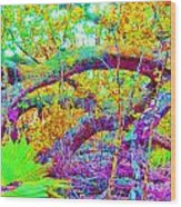 Fairy Tales Wood Print