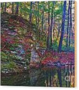 Fairyland Forest Wood Print