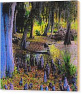 Fairyland Of Gnomes Wood Print
