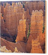Fairyland Overlook Wood Print