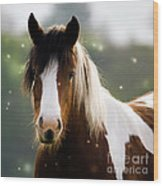 Fairytale Pony Wood Print