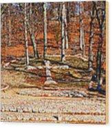 Faith And Freedom Wood Print