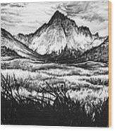 Faith As A Mustard Seed Wood Print by Aaron Spong