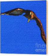 Falcon In Blue Wood Print