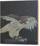 Falconry 5 Wood Print
