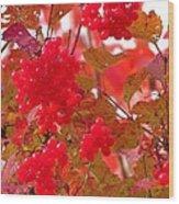 Fall 08-008 Wood Print