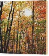 Fall 22 Wood Print