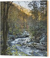 Fall Along Citico Creek Wood Print