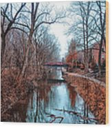 Fall Along The Delaware Canal Wood Print