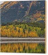 Fall Along The Forebay Wood Print