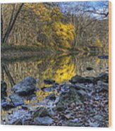 Fall Along The Scenic River Wood Print