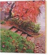 Fall And Fog Wood Print