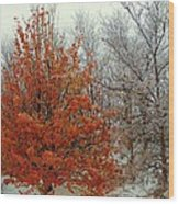 Fall And Winter 2 Wood Print