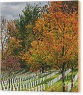 Fall Arlington National Cemetery  Wood Print